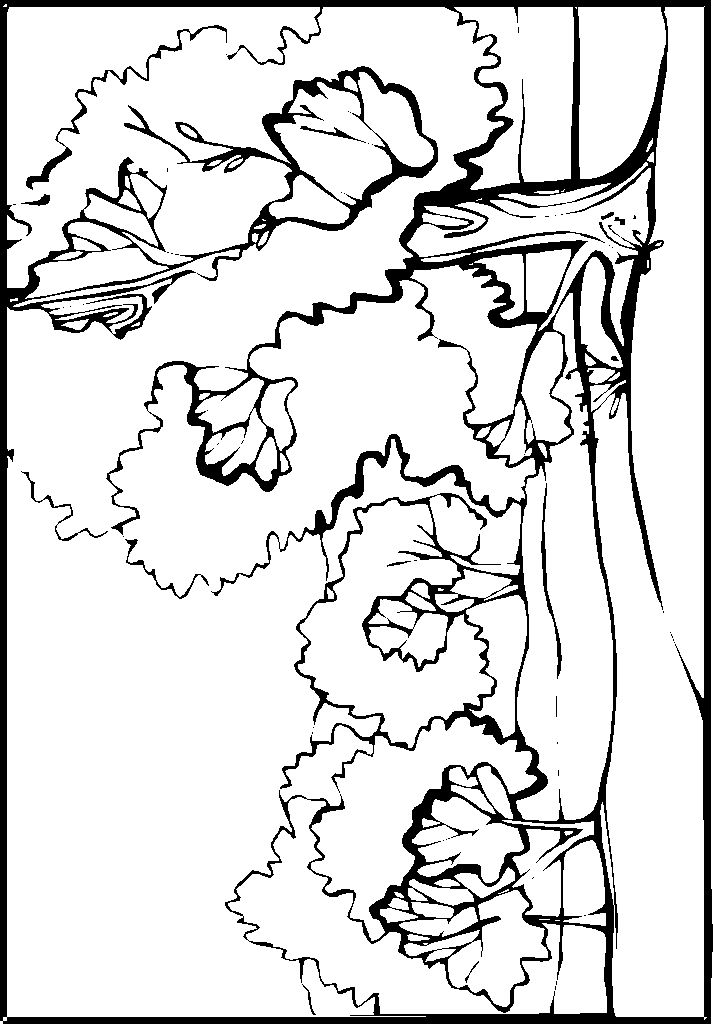 Elvis Presley Coloring Pages Coloring Pages Coloring Pages
