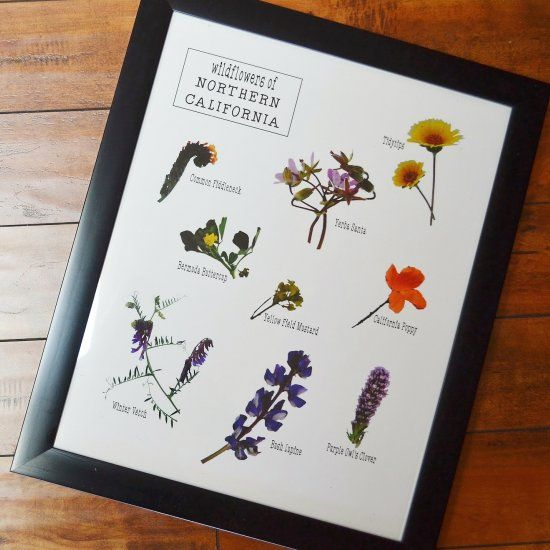 This wildflower art poster is easy to put together and a great idea for your walls!