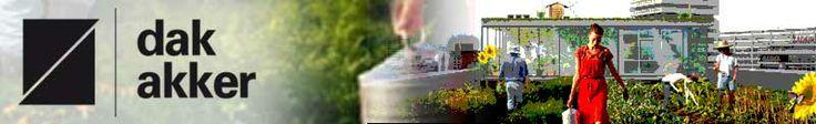 Een bedrijf dat zich bezig houd met het telen van groenten en fruit op daken.  groep Isolde