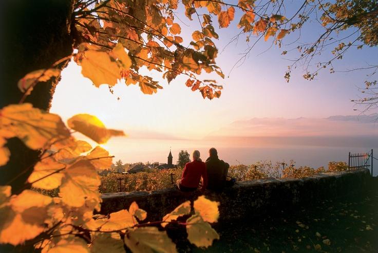 Romantic sunset in Lavaux UNESCO, Montreux Riviera