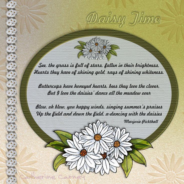 Poem About A Daisy Yahoo Image Search Results Poetry
