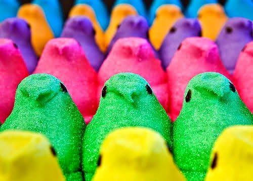 17 best How To Make a Peeps Diorama images on Pinterest  Dioramas