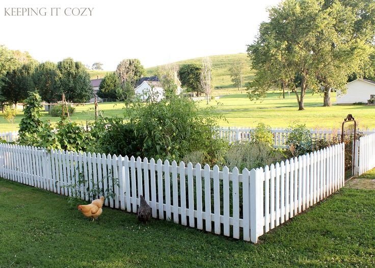 Picket Fence Garden Ideas 455 best for my soon to be fabulous garden images on pinterest 455 best for my soon to be fabulous garden images on pinterest country life country living and the campaign workwithnaturefo