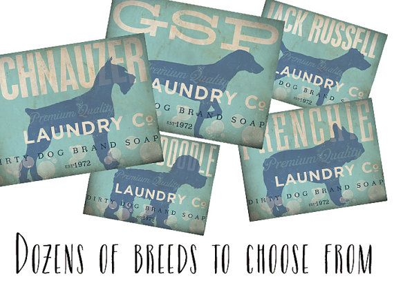 Dog Laundry Company illustration graphic art on by geministudio, want one of these in my future laundry room!