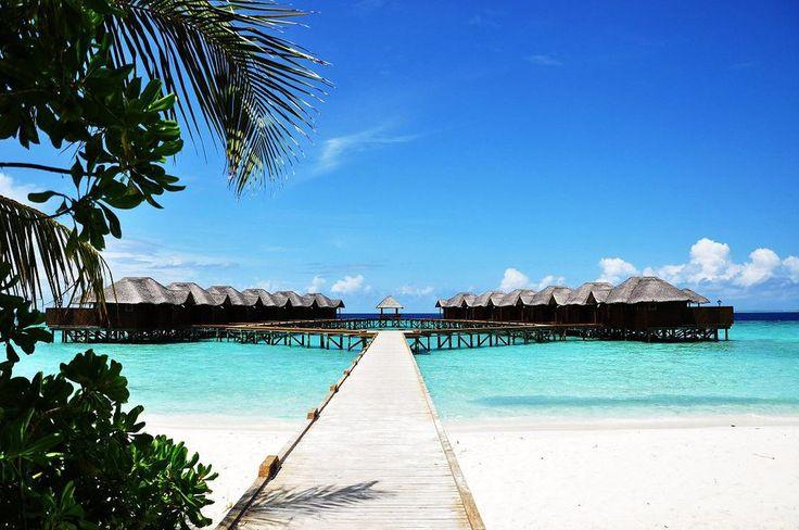 Wasserbungalow des Hotel Fihalhohi Island Resort auf den Malediven