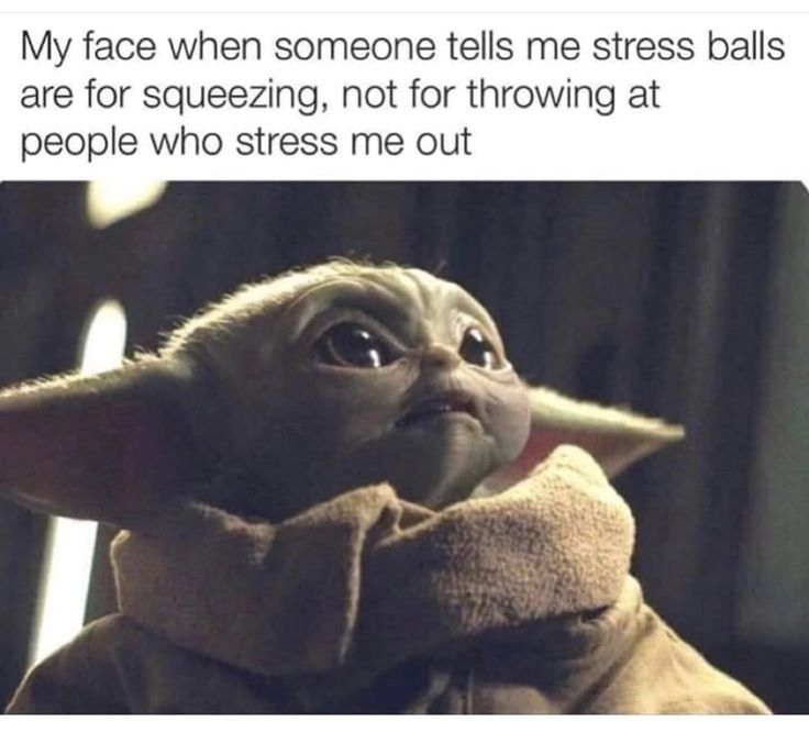Check Out These 25 Hilarious Photos That Will Make You Laugh Really Funny Memes Yoda Funny Stupid Funny Memes