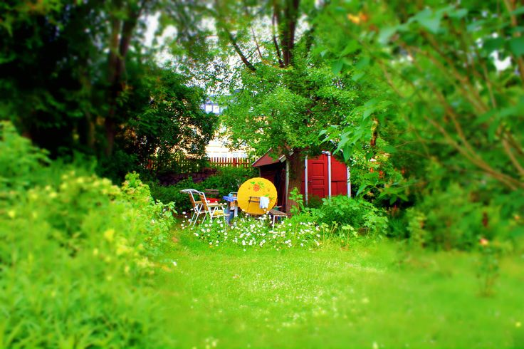 Green garden by Tamara Ferrer Basanta on 500px