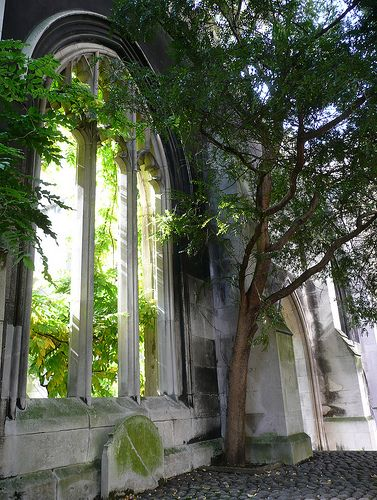 Ruins -  St Dunstan-in-the-East Church, London