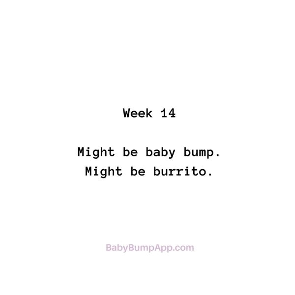 Week 14 Might be baby bump. Might be burrito. #pregnancy #milestones #cravings #burrito