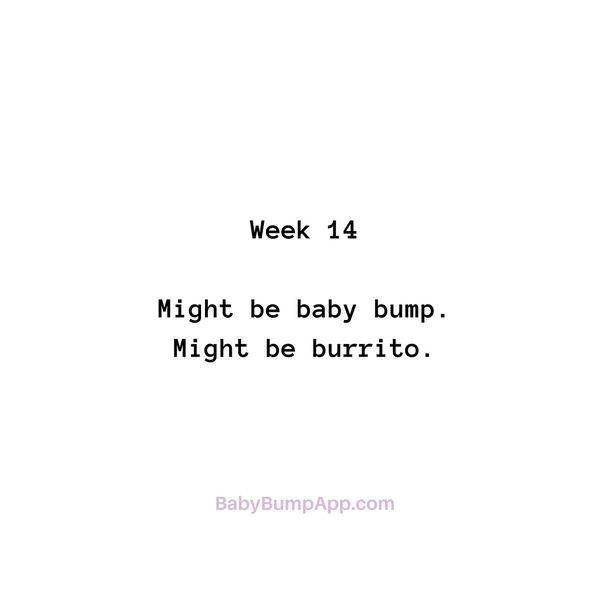 Week 14 Might be baby bump. Might be burrito. #pregnancy #milestones #cravings #burrito