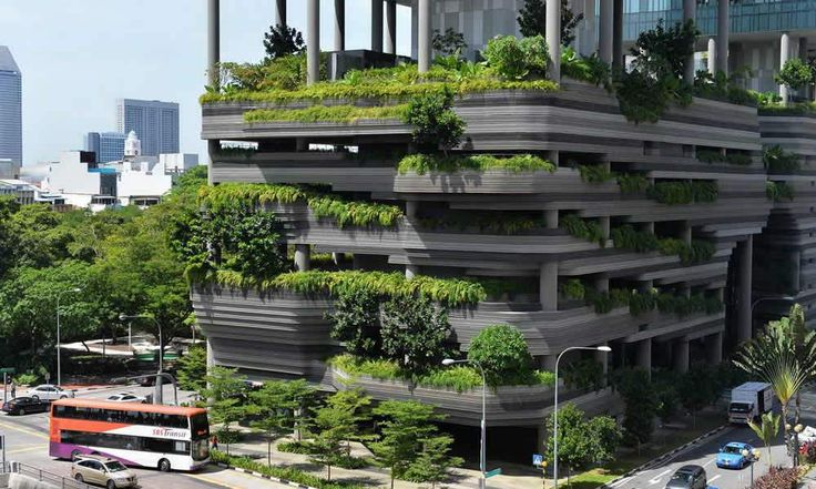 Singapour – Agriculture verticale : Le pays qui cultive dans les airs - http://www.camerpost.com/singapour-agriculture-verticale-le-pays-qui-cultive-dans-les-airs/?utm_source=PN&utm_medium=CAMER+POST&utm_campaign=SNAP%2Bfrom%2BCAMERPOST