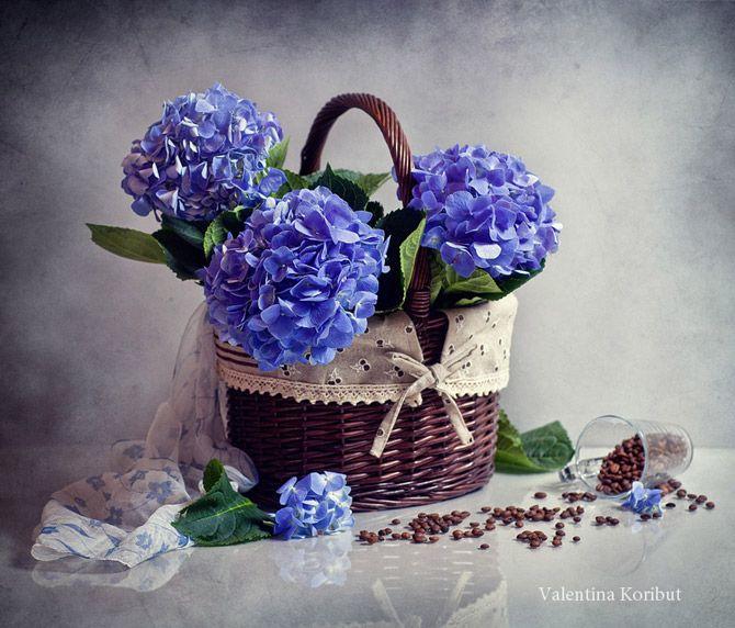 Amazing Still Life Photography   Amazing_Still_Life_Photography_Valentina_Koribut_13.jpg