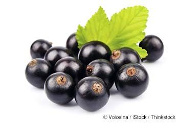Learn more about black currant nutrition facts, health benefits, healthy recipes, and other fun facts to enrich your diet. http://foodfacts.mercola.com/black-currant.html
