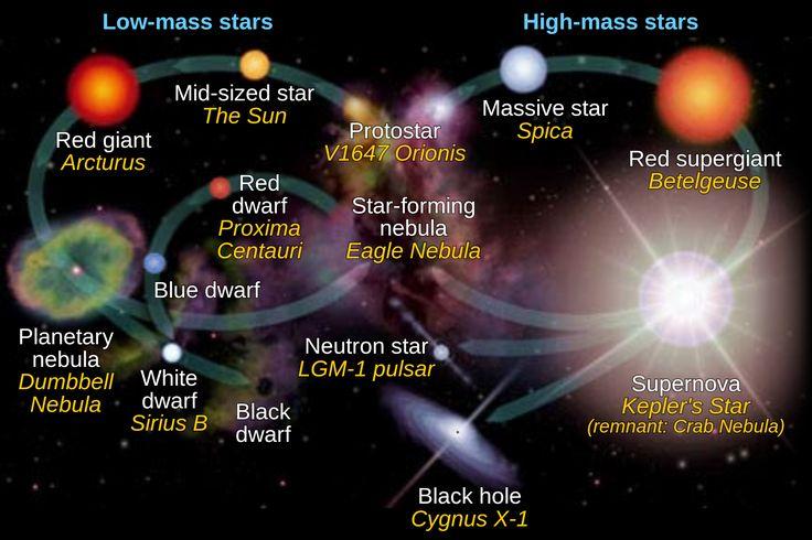star evolution - Recherche Google