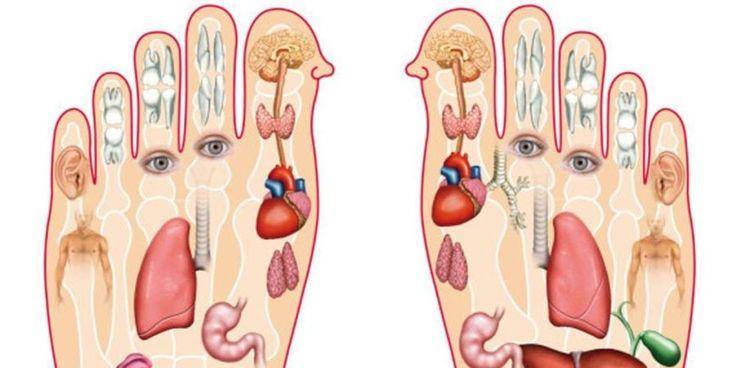A masszázsterápia az egyik leghatékonyabb módszer, amely az adott pontokra kifejtett nyomás ellazítja a testet és a lelket. A kézen és a lábon több olyan pont is...