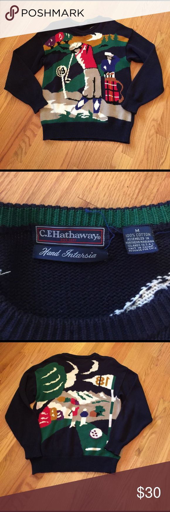 Vintage golf sweater Vintage golf sweater. Has couple small holes that can be sewn up. Super fun ! C.F Hathaway  Sweaters