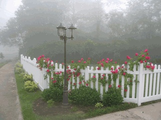The lamp post and the vibrant roses bring the style of the New England Scalloped Vinyl Picket Fence to life!