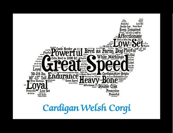 Cardigan Welsh Corgi cardigan welsh corgi art Custom