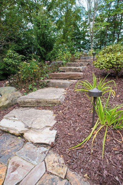 Bloom, Nursery, Garden, Landscaping, Landscaper, Perennials, Annuals,  Fountains,