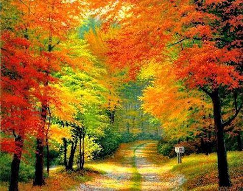 Great back roads with beautiful fall foliage...