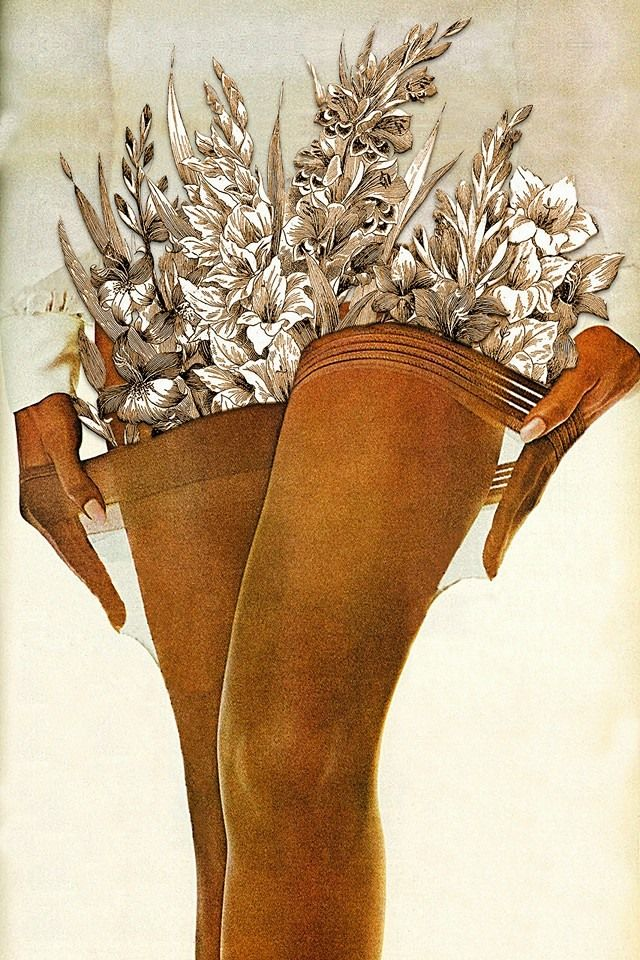 'Gladiolus' by Eugenia Loli