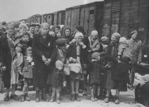 Jewish women and children deported from Hungary, separated from the men, line up for selection. Auschwitz camp, Poland, May 1944.