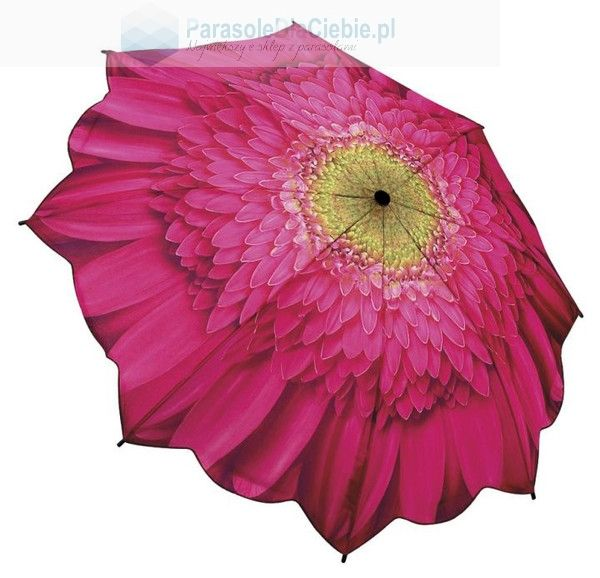 Parasol marki Galleria, Gerbera - kwiat