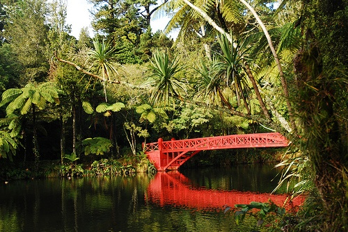 Red reflections and a peaceful calm.  Taranaki's botanical gardens