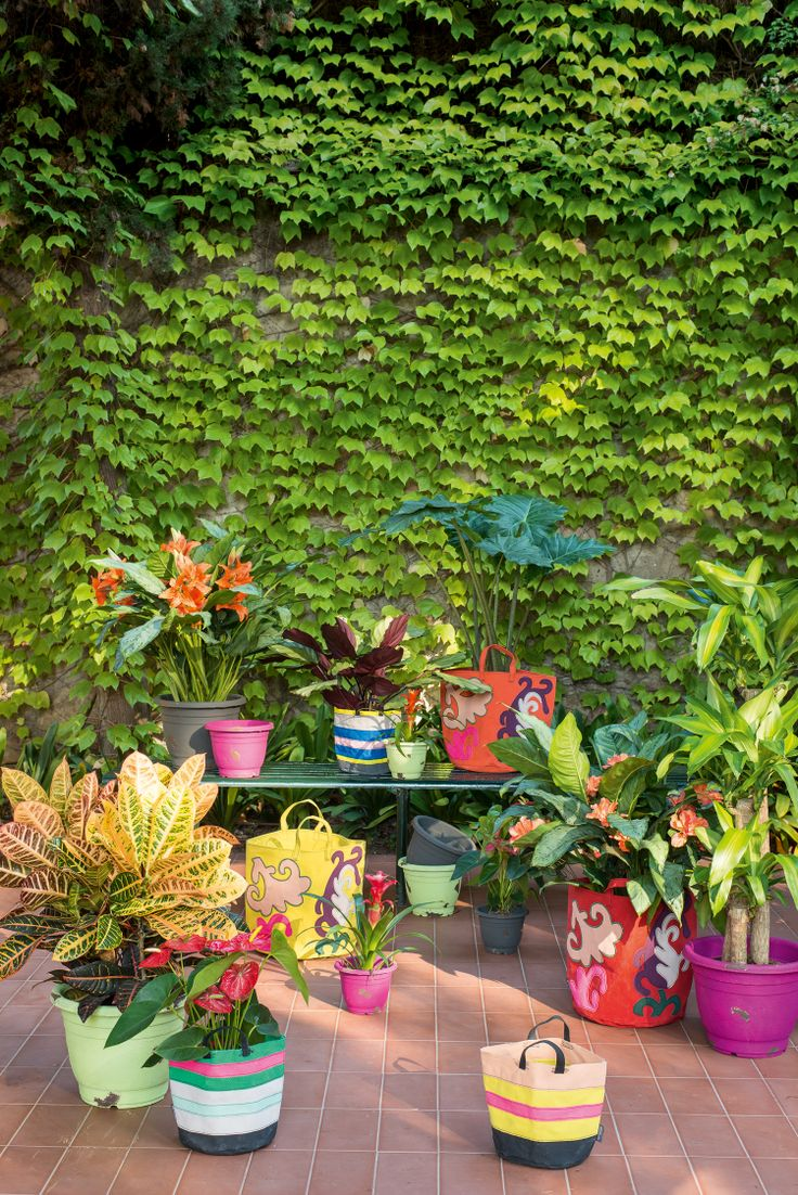 Flowerpots Outdoor and Antique, Bags Outdoor by Pfister, Summer Paradise, Indoor Ideas, Furnishing and Decoration Ideas, Decoration, Outdoor Ideas, Beautiful Garden, Beautiful Flowers