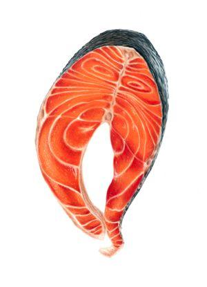 Salmon Steak- Colored Pencil Drawing - Sam Luotonen