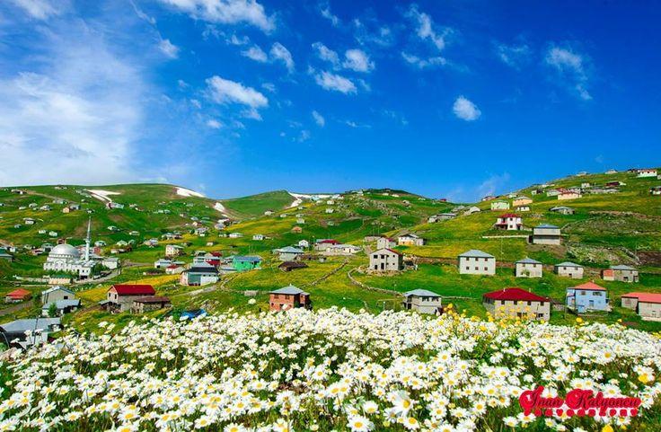 Trabzon / Tonya  Fotoğraf: İnan Kalyoncu