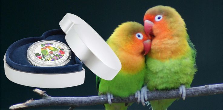 """Lovebirds Feature on 2017 """"Love is Precious"""" Silver Coin"""