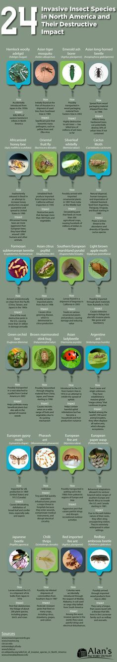 9 best 6th-12th Science Lessons images on Pinterest | Science ...