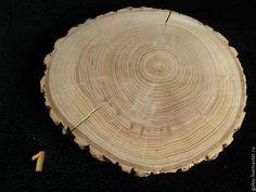 Купить Большие спилы дерева - спилы дерева, пеньки, деревянные спилы, натуральное дерево, спилы