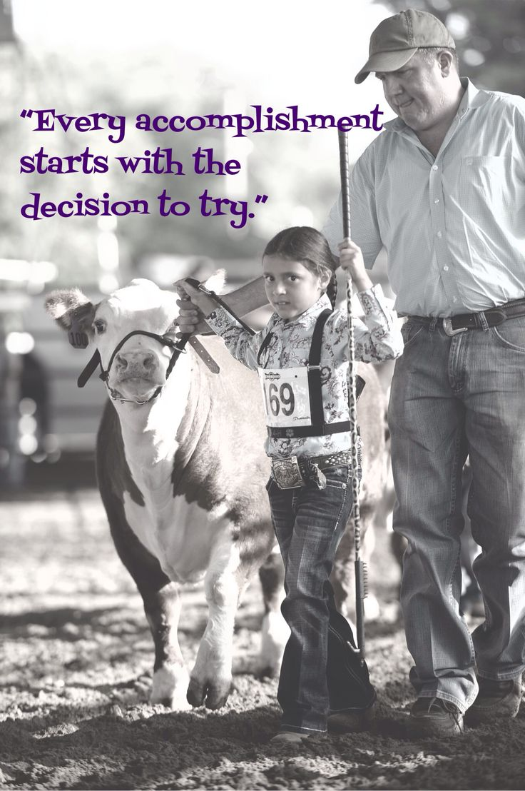 My life with cows and 4-H... Two the big reason I am where I am today with the help of my Heavenly Father