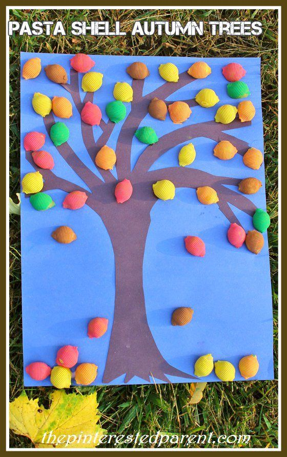 519 Best Creative Curriculum Tree Images On Pinterest