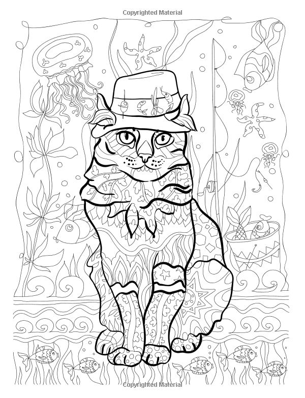 Amazon Colorful Cats Stress Relieving Cat Designs Creative Adult Coloring