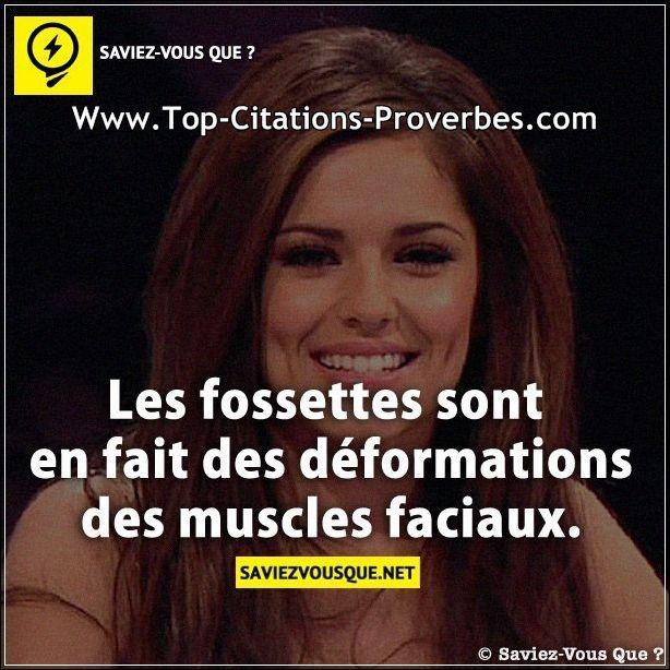 Citation_courte__Les_fossettes_sont_en_fait_des_deformations_des_muscles_faciaux._03226.jpg (614×614)