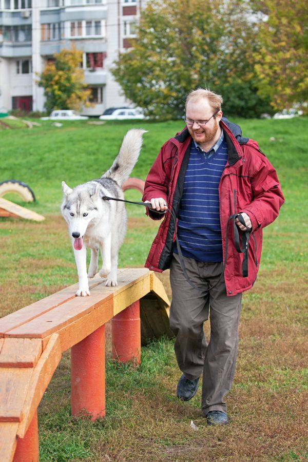 No Dog Park? No Problem! Here Are Some Creative Ways to Cope | Dogster