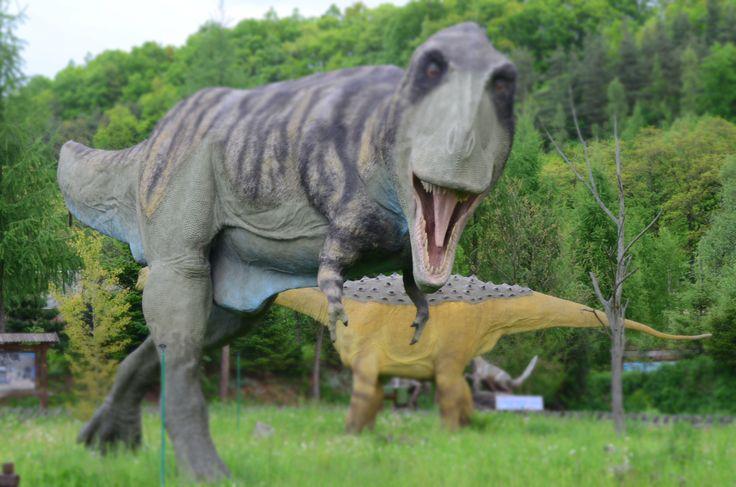 Nasz T-Rex... - Jurapark Bałtów.   W rzeczywistości wygląda groźniej, jest wielki i ma paszczę pełną ostrych zębów.  Budzi respekt i jest wdzięcznym obiektem do fotografowania.