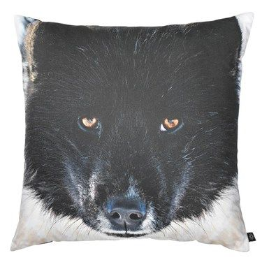 City north Cushion - Sled Dog - Exceptional photo print pillows with motif of sled dog - Buy the beautiful pillows at DesignMe