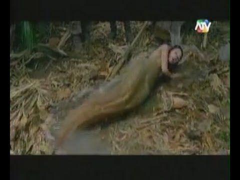 Sereias Reais a ((( Real Mermaids)))