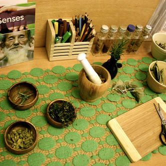 Sensory provocation with herbs