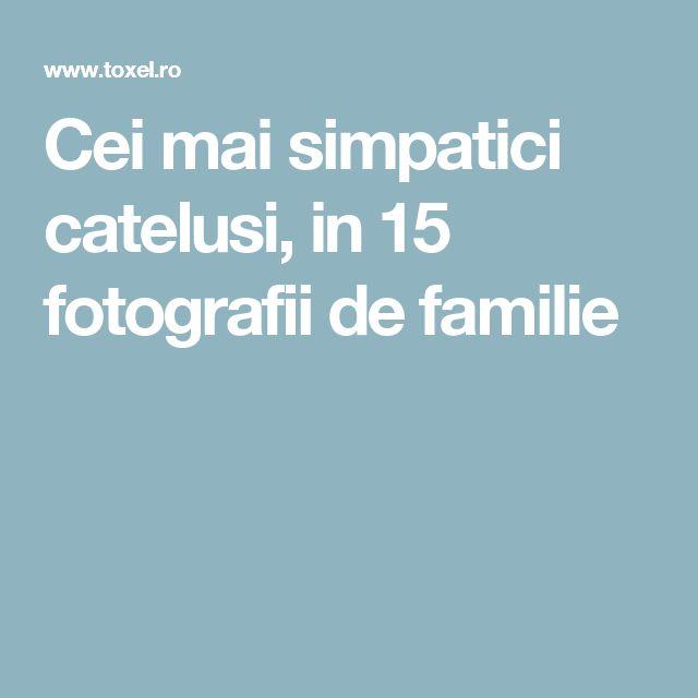 Cei mai simpatici catelusi, in 15 fotografii de familie