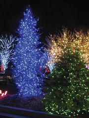8 best christmas lights images on pinterest christmas ideas fantastic static or multi function christmas lights heavy duty for all year round aloadofball Choice Image