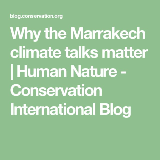 Why the Marrakech climate talks matter | Human Nature - Conservation International Blog