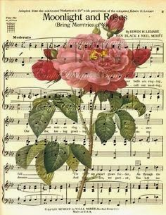 Partituras antigas fazem parte de um patrimônio musical mundial, são raridades, maravilhosas!              Algumas ilustradas c...