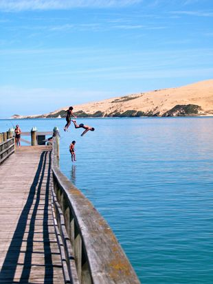Jumping off Omapere wharf, Hokianga Harbour, Northland, New Zealand