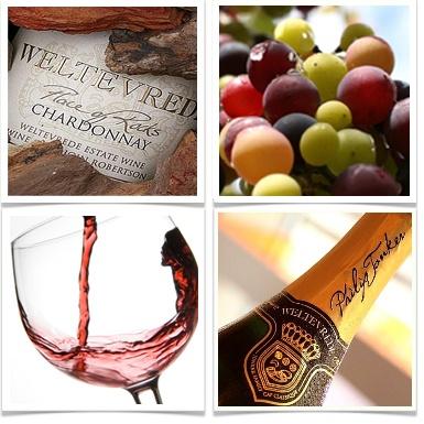 Weltevrede wine estate, #discoveroverberg #Robertson