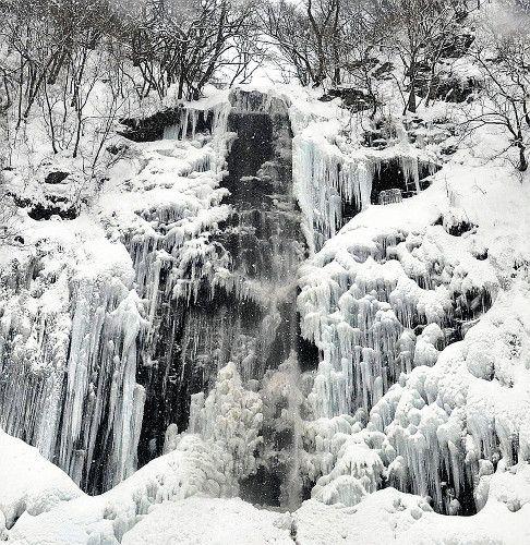凍結して大きなつららをつけた玉簾の滝(酒田市)